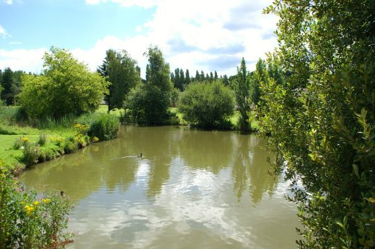 lakes for leisure fishing