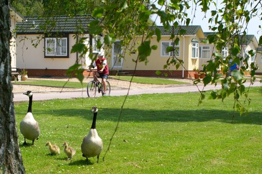 pre owned holiday homes for sale in Dawlish view our homes