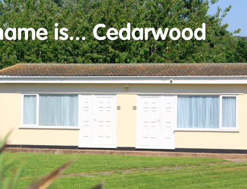 Accommodation News for 2017 at Hazelwood Holiday Park